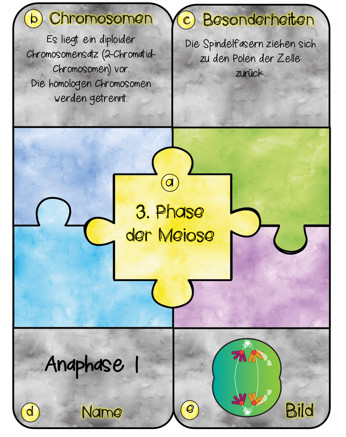 Anaphase 1 komplett
