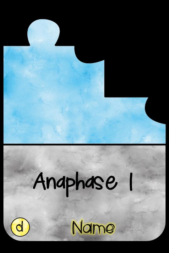 Anaphase 123