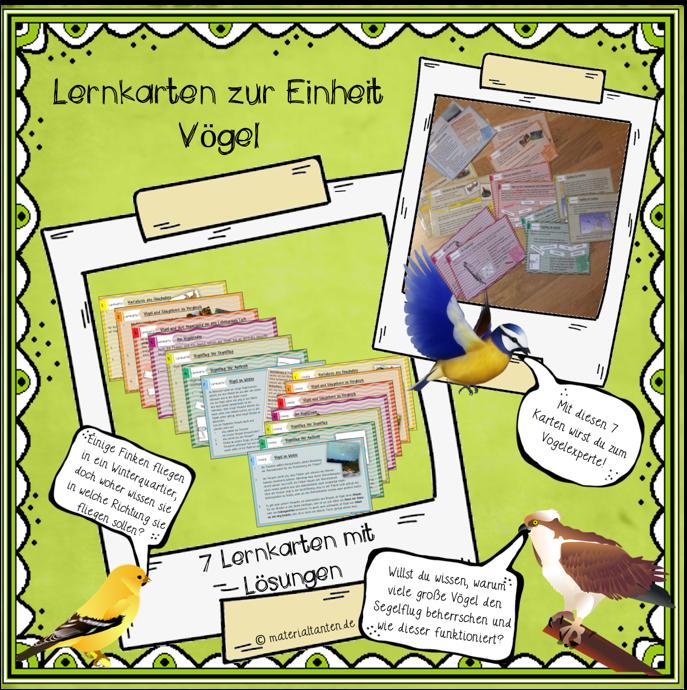 Produktbild Vögel Lernkarten