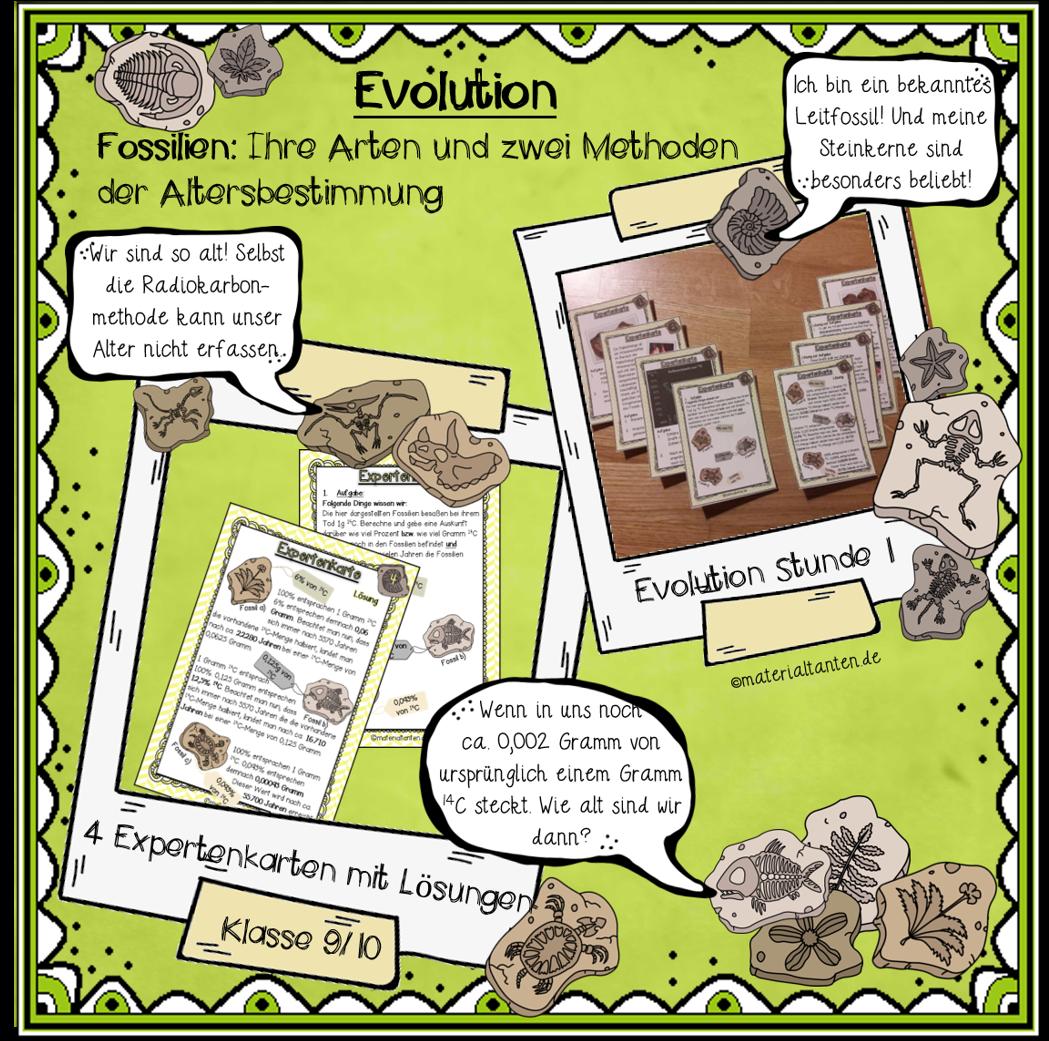 Unterricht Evolution / Biologie / Klasse 9