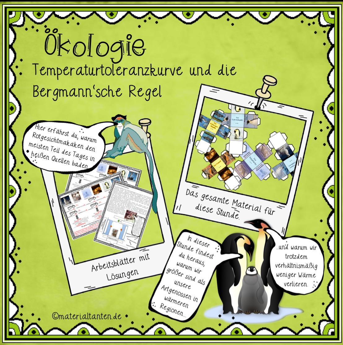 Ökologie: Temperaturtoleranz und die Bergmann\'sche Regel ...