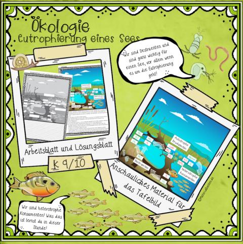 Ökologie: Eutrophierung eines Sees - Materialtanten