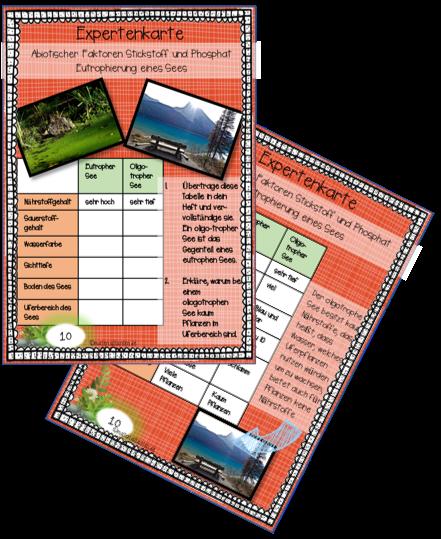 Vorschaubild 2 Karten