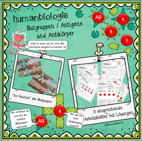 Produktbild Blutgruppen