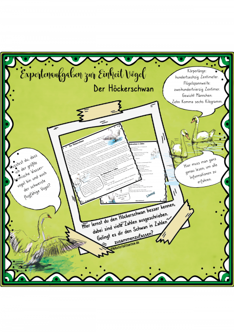 Produktbild Höckerschwan